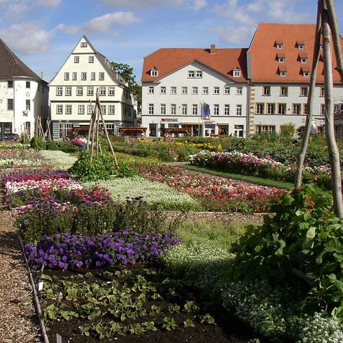 proj_hirschgarten2