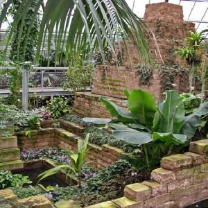 exotische Pflanzen und Naturstein