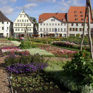 Entente florale 2008 - Hirschgarten Erfurt